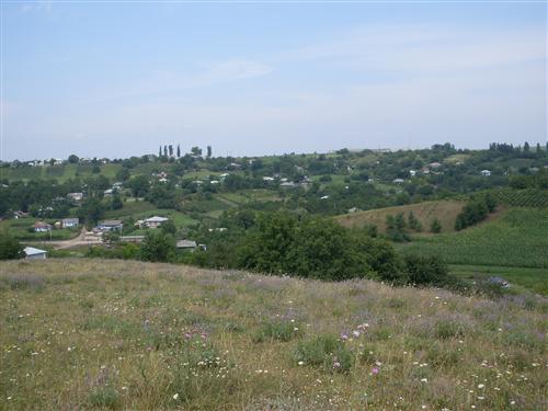 Sturzeni - Moldova